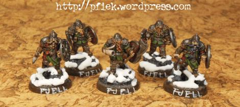 Nordgaard - die fehlenden 5 Fjell Warriors
