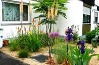 Pflanzung mit Kalksplittabdeckung