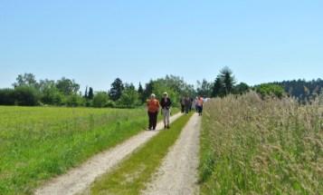 Wanderung Maria Birnbaum
