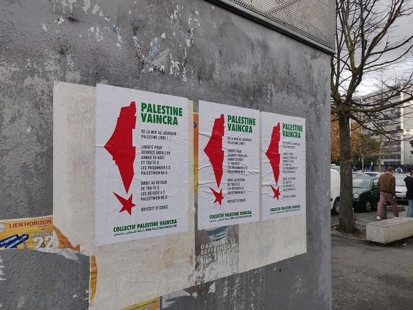 toulouse-palestine5.jpg