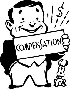 The CEO Compensation Conundrum: What is Reasonable and
