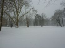 20130223_Brody-Winter_2_Zuber