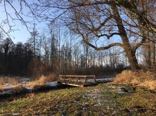 20170129_rundwanderweg-pfoerten_zuber_20