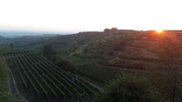 Ausflug zum Weingut Pix