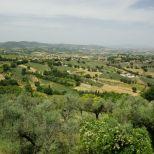 Assisi 2021_07_08, PTsch (521) - klein