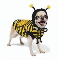 Pampet Bee Costume for Pets