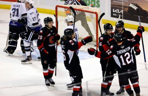Cougars end pre-season with 8-5 win over Royals