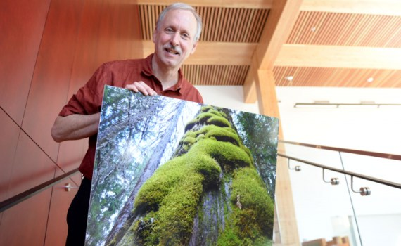 Dr. Darwyn Coxson, an Ecoystem Science and Management Professor at UNBC, received support from the BC Parks Living Lab Program for his research team to study plant biodiversity at the Ancient Forest/Chun T'oh Whudujut Park last year. The study also included neighbouring Slim Creek Park, Sugarbowl-Grizzly Den Park and the Sinclair Mills (Meteor Lake) wetland. UNBC photo