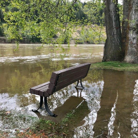 High water at PaddleWheel Park. City of Prince George photo