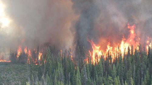 Shovel Lake fire. BC Wildfire Service photo