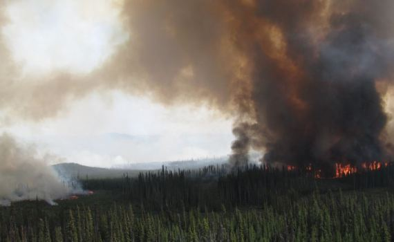 Shovel Lake fire. B.C. Wildfire Service photo