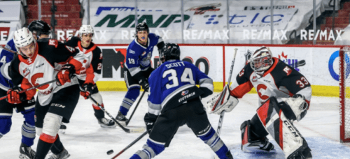 Royals end losing skid with win over Cougars