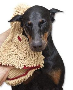 soggy-doggy-towel