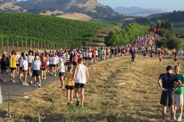 Napa Valley Marathon | Spryliving.com