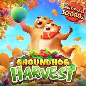 Groundhog Harvest PG Slot Wallet