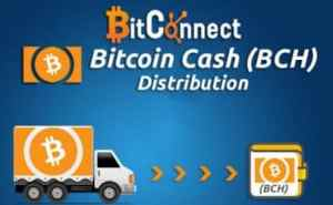 Bitconnect Wallet | Earn Bitcoin Daily with Bitconnect Coin