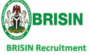 BRISIN Job Recruitment 2018 | Register www.brison.gov.ng