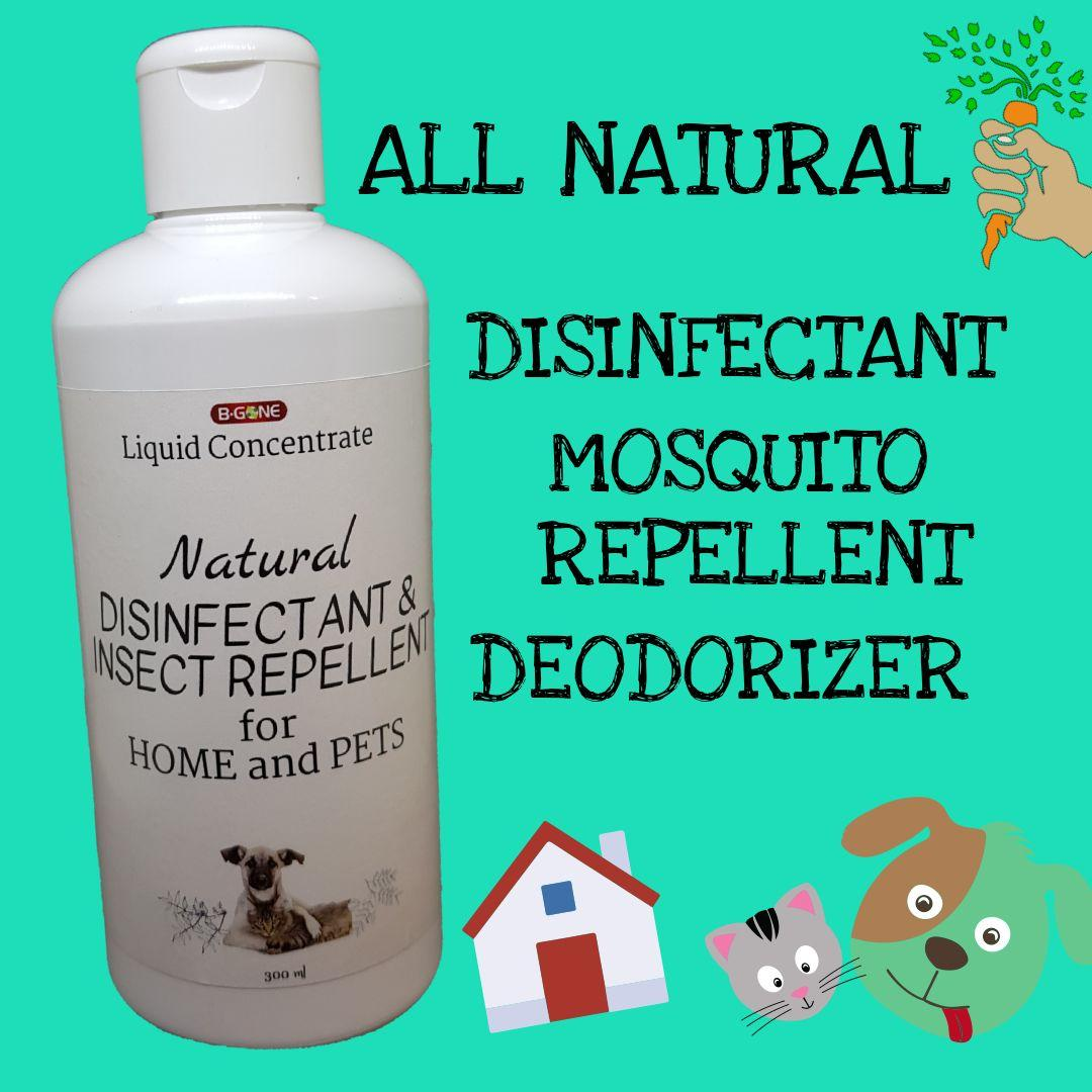 natural sofa deodorizer in english bgone lc all disinfectant insect repellent for home and pet areas philippines