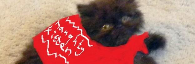 cropped-naughty-kitten.jpg