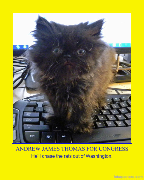 andy for congress poster