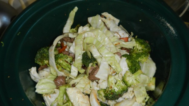 Cabbage, carrot, broccoli, diced tomatoes, yellow pepper, and cubed beef. I decided against potatoes in case I end up freezing some of it -- very likely! Potatoes get a strange texture when frozen, one I dislike.