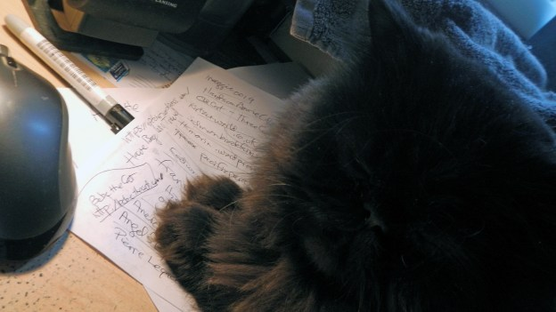 """I see several blogs on your hand-written list I know you follow faithfully, kitty ones. Why is there only one kitty blog on your final list?"" Dougy wanted to know...."