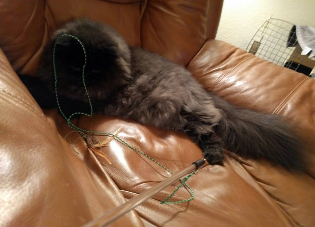 110516-dougy-tangled-recliner