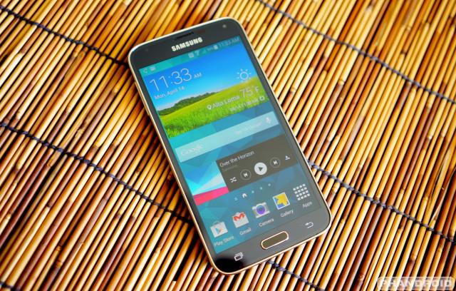 Samsung Galaxy S5 wood DSC05784