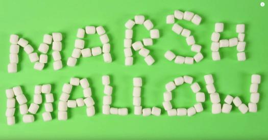 Android Marshmallow marshmallows
