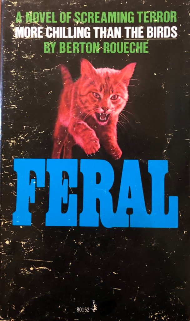 """A pink-tinted cat jumps from a black background on the paperback cover of Berton Rouche's """"Feral."""""""