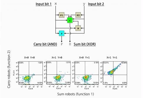 robotic algorithm