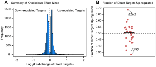 Magnitude and direction of differential expression after knockdown