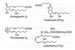 arachidonic acid derivatives