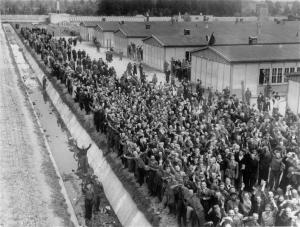 Dachau survivors gather by the moat to greet American liberators, 29 April 1945