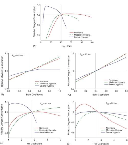 varying different biochemical features of hemoglobin (Hb) on oxygen consumption