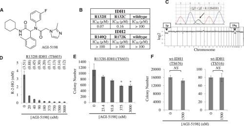 an-r132h-idh1-inhibitor-blocks-r-2hg-production-and-soft-agar-growth-of-idh1-mutant-glioma-cells