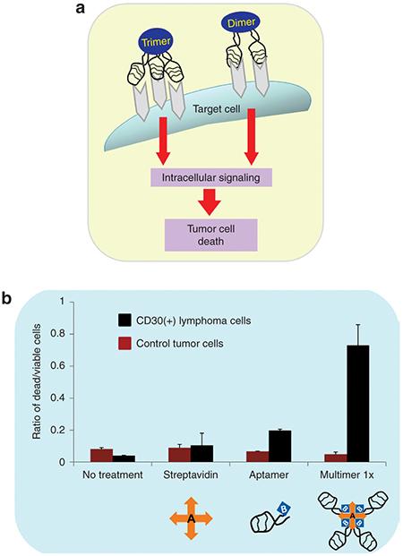 Aptamer-based biotherapy
