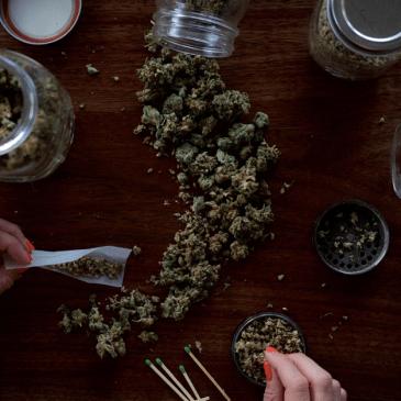 Au Canada, les consommateurs de cannabis thérapeutique dans la tourmente