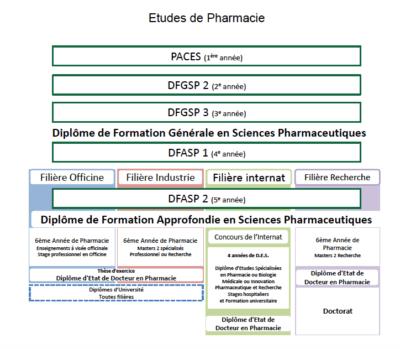 schéma études pharmacie