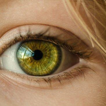 L'œil bionique : quand la réalité dépasse la science-fiction