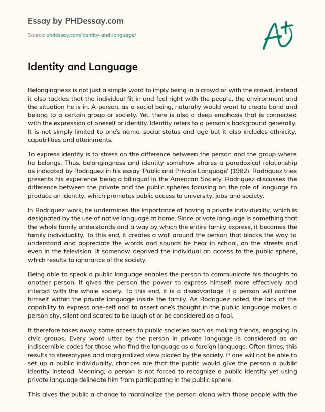Identity and Language - PHDessay.com