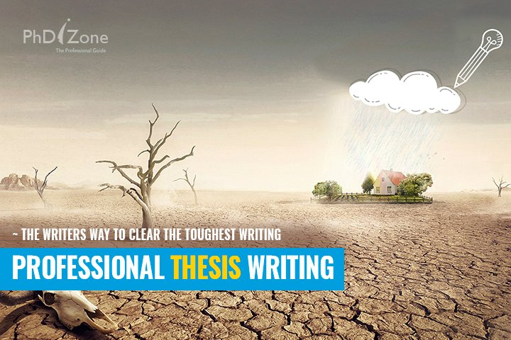 professional thesis writers