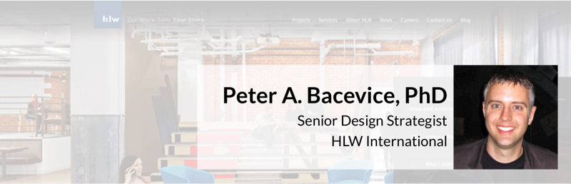 Peter Bacevice Intro 800x257