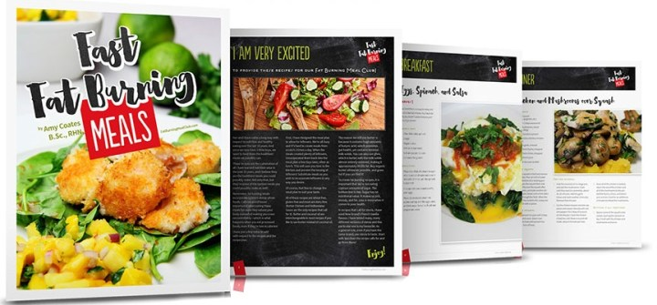 Fast Fat Burning Meals eBook