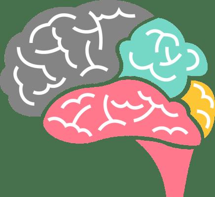 Neuroactiv6 focus and clarity