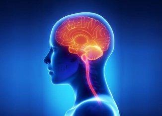Onnit Alpha Brain health