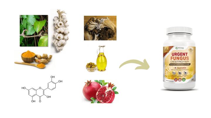 Urgent Fungus Destroyer Ingredients