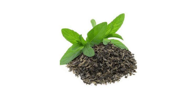 Spore Metabolic Boost Ingredients- Green tea extract