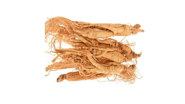 Spore Metabolic Boost Ingredients - Panax Ginseng