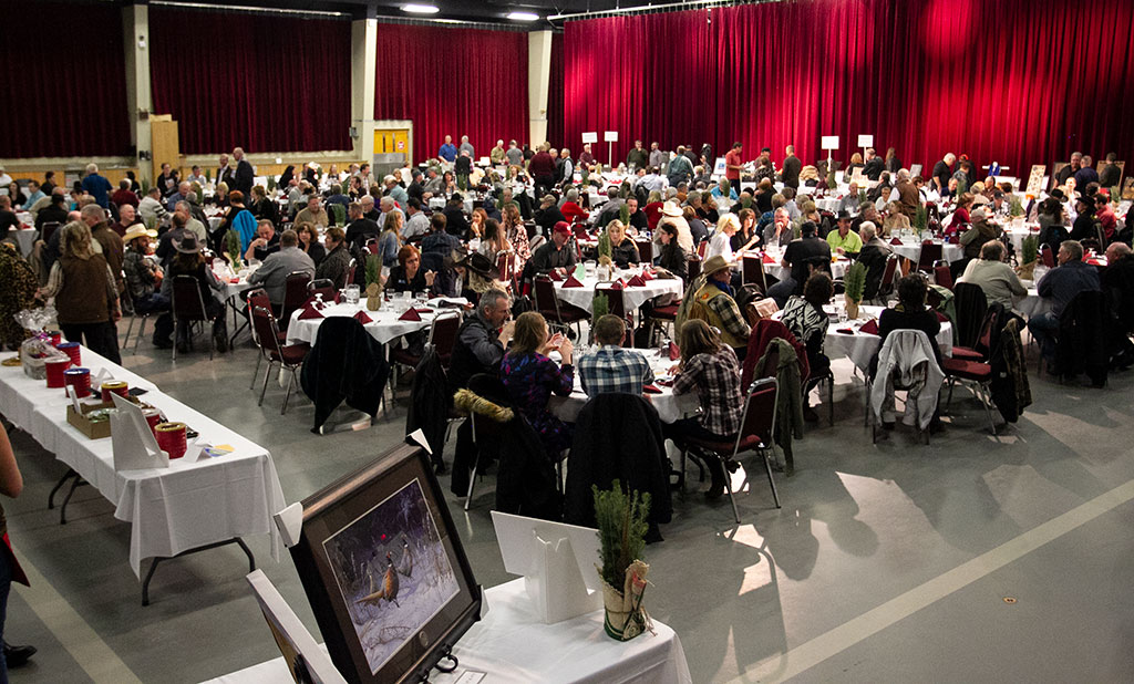 2018 Pheasants Banquet